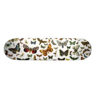 ヨーロッパの蝶コラージュ スケートボード
