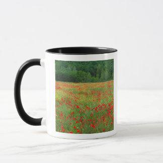 ヨーロッパ、イタリア、タスカニーの分野の赤いケシ マグカップ