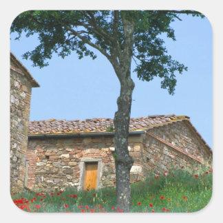 ヨーロッパ、イタリア、タスカニーの断念された別荘 スクエアシール