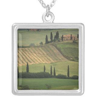 ヨーロッパ、イタリア、タスカニーのValのd Orcia、トスカナ シルバープレートネックレス