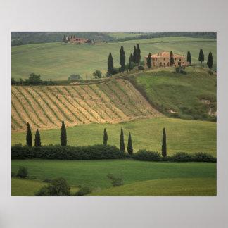 ヨーロッパ、イタリア、タスカニーのValのd Orcia、トスカナ ポスター