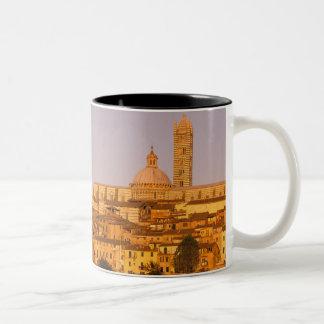 ヨーロッパ、イタリア、タスカニー、シエナ。 13世紀2 ツートーンマグカップ
