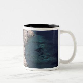 ヨーロッパ、イタリア、タスカニー。 岩が多い海岸; カーラ ツートーンマグカップ