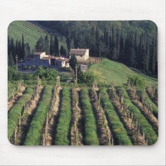 ヨーロッパ、イタリア、タスカニー。 景色の別荘キプロス マウスパッド