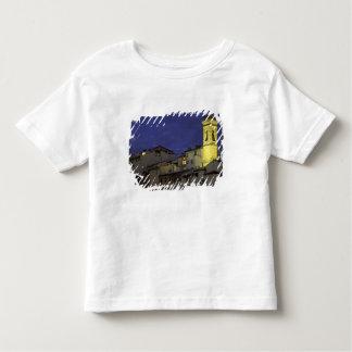 ヨーロッパ、イタリア、フィレンツェの建築詳細; トドラーTシャツ