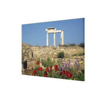 ヨーロッパ、ギリシャ、キクラデス諸島、Delos。 コラムの台なし キャンバスプリント