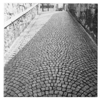 ヨーロッパ、スイス連邦共和国、チューリッヒ。 玉石を敷かれた通り、 タイル