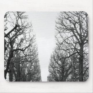 ヨーロッパ、フランス、パリ。 冬の木、マルコ・ポーロ マウスパッド