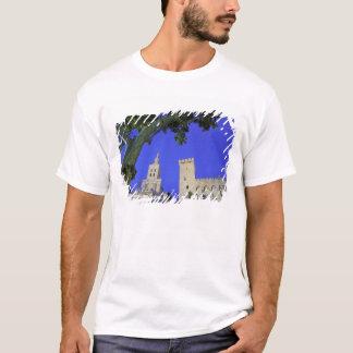 ヨーロッパ、フランス、プロバンス、ボークリューズ、アビニョン Tシャツ