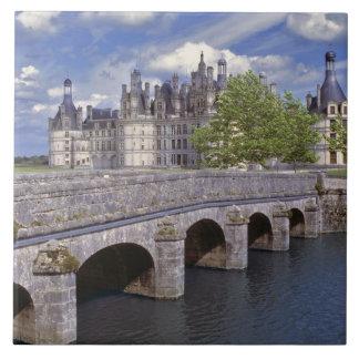 ヨーロッパ、フランス、Chambord。 石造り橋鉛 タイル