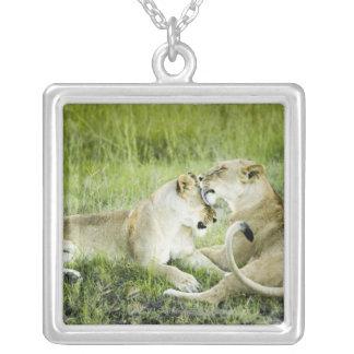 ライオンおよび雌ジシ、アフリカ2 シルバープレートネックレス