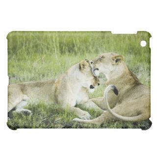 ライオンおよび雌ジシ、アフリカ2 iPad MINI カバー