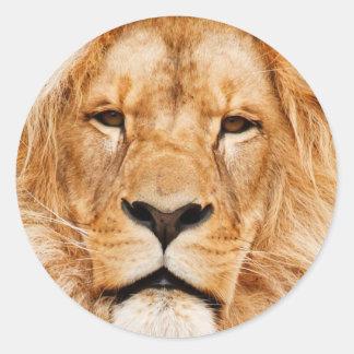 ライオンのステッカー ラウンドシール