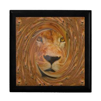 ライオンのスマイル ギフトボックス