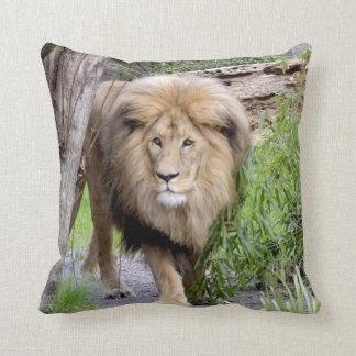 ライオンの写真のプリントの装飾用クッション クッション
