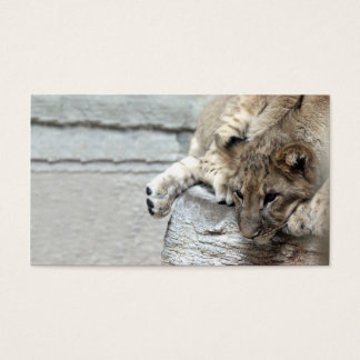 ライオンの子のプロフィールカード 名刺