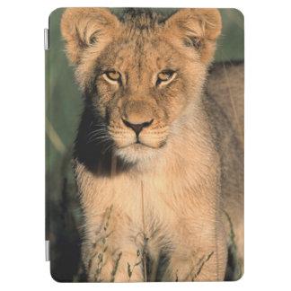 ライオンの子は長い草からのカメラを観察します iPad AIR カバー