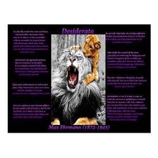 ライオンの子 ポストカード