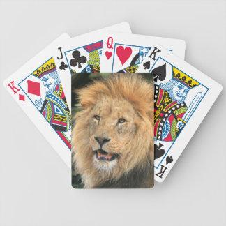 ライオンの男性のヘッド美しい写真のポートレート、ギフト バイスクルトランプ