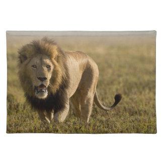 ライオンの男性の狩り ランチョンマット