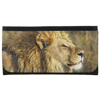 ライオンの野生動物の野性生物のサファリ