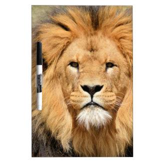 ライオンの頭部 ホワイトボード