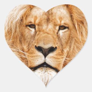 ライオンの顔の写真 ハートシール