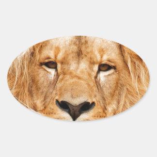 ライオンの顔の写真 楕円形シール