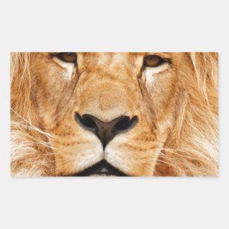 ライオンの顔の写真 長方形シール