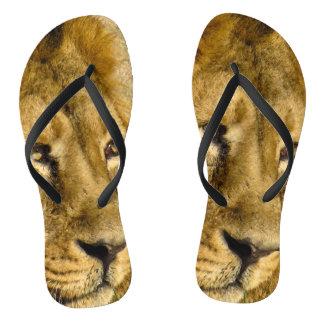 ライオンの顔の頭部の動物の野性生物の金ブラウンの毛 ビーチサンダル