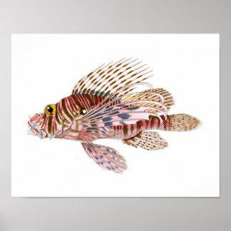 ライオンの魚はいいえ8ビーチハウスの装飾の芸術を印刷します ポスター