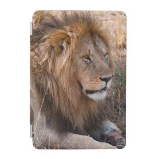 ライオンのMaasaiマラの国立保護区、ケニヤ iPad Miniカバー