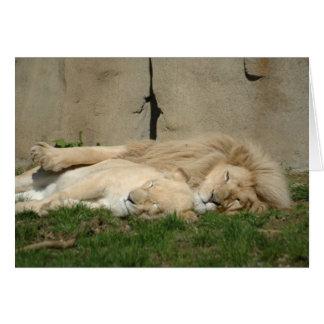 ライオンはあなたの腕で今夜眠ります カード
