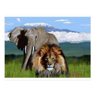 ライオン象 ポストカード