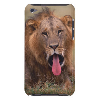 ライオン2 Case-Mate iPod TOUCH ケース