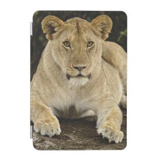 ライオン、ヒョウ属レオのSerengetiの国立公園、 iPad Miniカバー