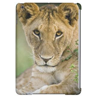 ライオン、ヒョウ属レオ、マサイ語マラ、ケニヤ iPad AIRケース