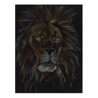 ライオン ポストカード