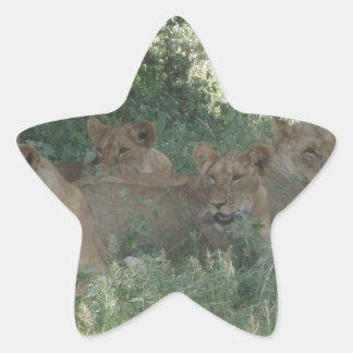 ライオン 星シール