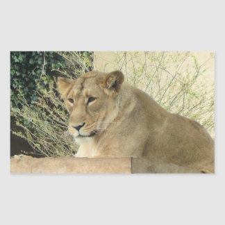 ライオン 長方形シール