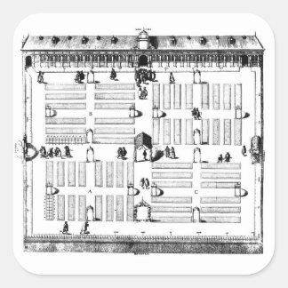 ライデンの植物園(版木、銅版、版画) (b/wの写真) スクエアシール