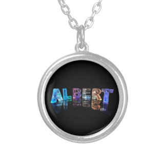 ライトの一流のアルバート シルバープレートネックレス