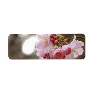 ライトの日本の桜 ラベル