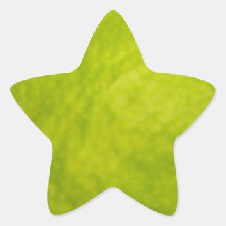 ライムの質 星シール