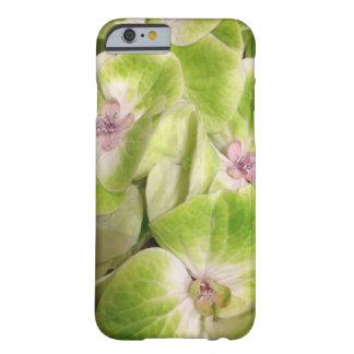 ライムグリーンのアジサイの花柄 BARELY THERE iPhone 6 ケース