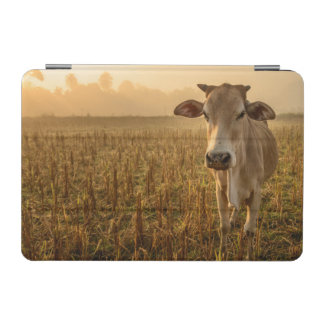 ラオス、Vang Vieng。 日の出の牛 iPad Miniカバー