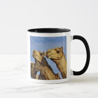 ラクダのトリオ、ラクダの市場、カイロ、エジプト マグカップ