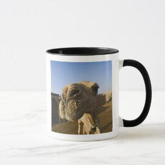 ラクダの市場、カイロ、エジプト マグカップ