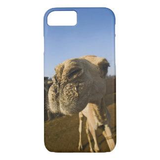 ラクダの市場、カイロ、エジプト iPhone 8/7ケース