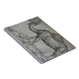 ラクダ ノートブック
